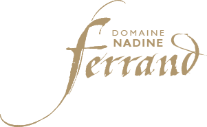 logo Domaine Ferrand